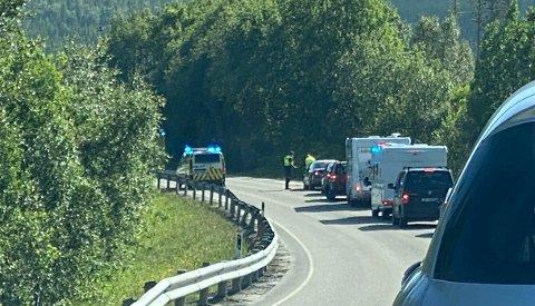 Det ble lang kø etter at bil og elg kolliderte ved Nordvikmyra.