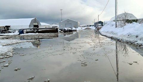 INNSJØ: Slik så det ut utenfor leiebilfirmaet Rent A Star i Tromsdalen torsdag formiddag. Bydrift, VVS24 og Høytrykksvakta mener de ikke har nok folk til å ta unna alle henvendelsene torsdag.