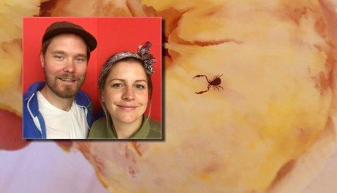 UKJENT KRABAT: Anja Hofsøy Tolsrød og Frode R. Tolsrød lurer på hva slags dyr de oppdaget i appelsinen. (Foto: Privat)