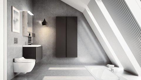 Med dusjtoalett blir du vasket ren av en behagelig vannstråle.