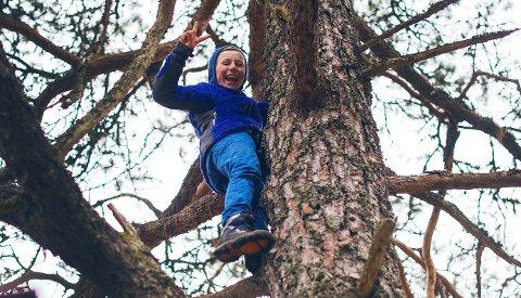 ENKLE AKTIVITETER: Treklatring er noe de fleste barn synes er veldig gøy.