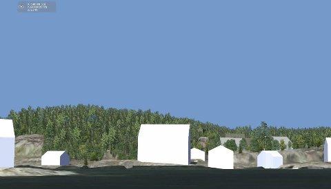 Nye boliger: Reguleringsplanen skal gi Borøy flere nye helårsboliger. Den nye bebyggelsen vil komme i bakkant av den historiske bebyggelsen i Borøykilen.