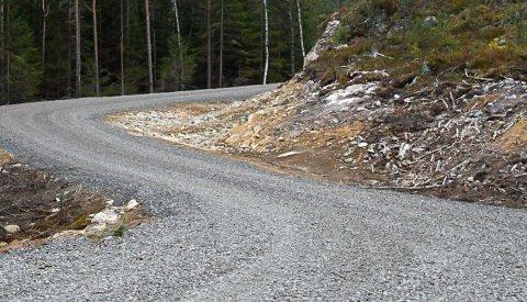 Knut Arne Eikås vil ombygygge skogsveien.