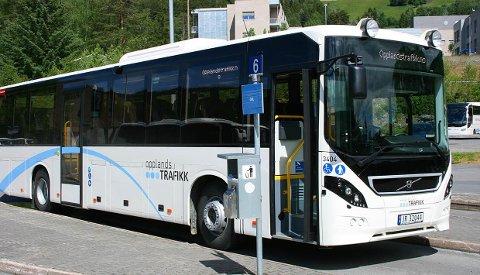 BUSS: Mange benytter seg av buss, og ruta mellom Gol og Fagernes er avhengig av at toget kommer tidsnok.