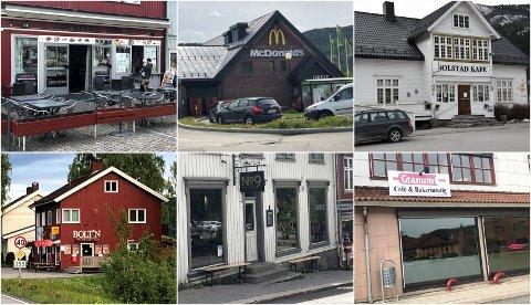 Disse seks stedene var blant de 20 som fikk besøk av Mattilsynet i mai.
