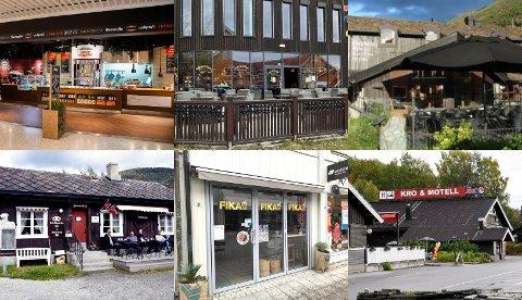 Disse spisestedene var av de 15 som i april fikk besøk av Mattilsynets kontrollører.