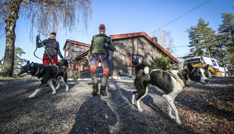 På tur: Med to ivrige nyttehunder i bånd kreves det litt ekstra av eierne. Et ansvar som tas på fullt alvor. Hundene Balder (tv) og Loke med eierne Hege og Martin Andreassen Hellem.