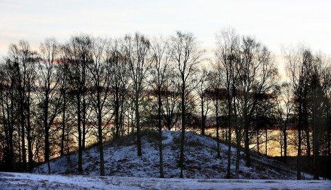 MYSTERIUM: Det har vært gravd mye i Raknehaugen, men fortsatt er det et mysterium om noen ble begravet her, og hvem dette var. FOTO: TOM GUSTAVSEN