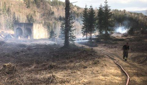 Brannvesenet har fått kontroll på gressbrannen.