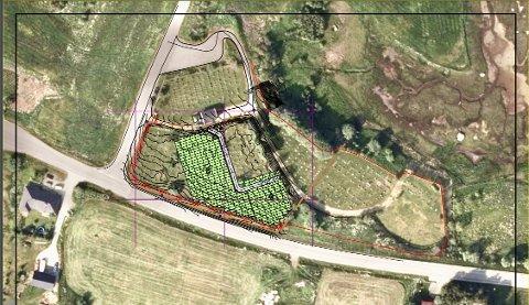 På disse to skraverte plassene skal det tilrettelegges for to nye gravfelt.