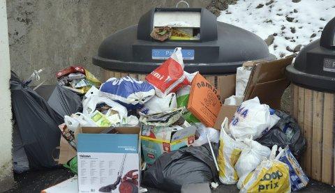 SØPPELBERG: Søppelet har hopet seg opp mange steder etter at Veireno overtok ansvaret i Oslo, her fra Hauketo for et par uker siden. Begge foto: Nina Schyberg Olsen