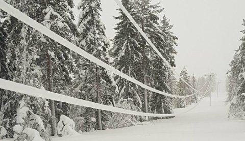 TUNG SNØ: Snøværet fører til strømbrudd i Innlandet mandag kveld. Arkivfoto: Elvia