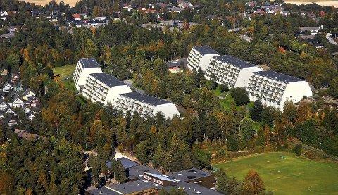 KLASSISK: Skogholtet Borettslag var et meget spesielt boligprosjekt. Borettslaget består av seks terrasseblokker.