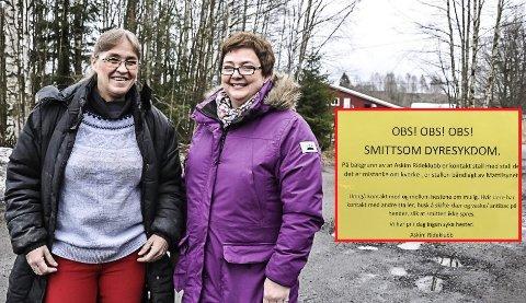 FØLGER PÅLEGGENE: Rideklubben sier helsen til dyra kommer først. Fra venstre styremedlem Marit Bergli og tidligere leder Anne Grethe Holstad. Arkivfoto: Guri Rønning
