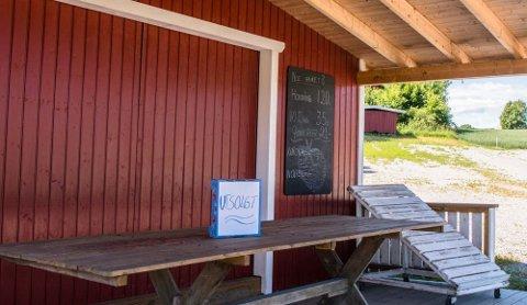 Jordbærbua hos Saxebøl på Klommestein ble tidlig utsolgt på lørdag. Men allerede fra søndag klokken 10 har de nyplukkede bær for salg.