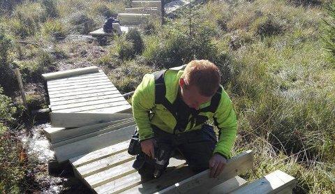 Trekloppar: Her blir det lagt trekloppar over nokre av dei våte områda i turløypene over Hjertåsfjellet.Foto: Privat