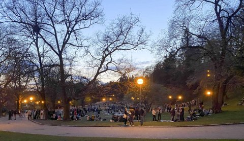 Festingen i Nygårdsparken er et stadig tilbakevendende problem. (Arkivfoto)