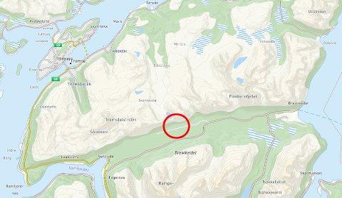LANGMOEN: Dette området på Breivikeidet ble foreslått som ny arena for hovedskytebane. Men kommunen mener et slikt anlegg blir svært vanskelig å realisere her.