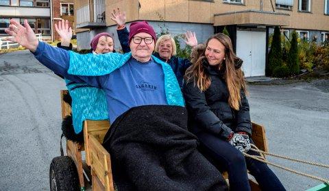 - HELT TOPP: Dette var helt topp, syntes Sigurd Lønstad, Bjørg Fredrikstad (bak t.v.) og Ann Kristin Ulvesveen etter å ha vært med Lene Sørhagen på kjøretur med hest og vogn.