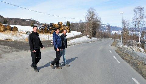 IKKE TRYGT: Herfra og nordover Fylkesveg 330 er det ikke trygt å gå, sier Hans Opsahl, Jan Erik Nyhus og Ingvild Kleven der de krysset veien før Feiring-svingen.