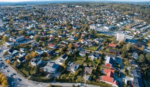 Norsk hussopp forsikring har registrert at hele 60-70 prosent av de meldte skjeggkreskader er på boliger som er nyere enn 10 år.
