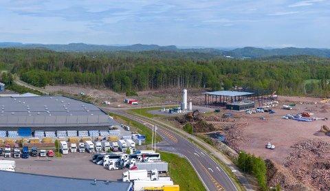 BORGESKOGEN ØST: Vaksinefabrikken er planlagt i dette området på Borgeskogen. Tomta er i utgangspunktet på åtte mål, men kan utvides til 10 mål.