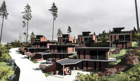 NY STIL: Maken til prosjektet i Høgås Sør er ikke skapt på Notodden tidligere. Boligene er tegnet av Jon Grøstad og byggingen kan starte allerede i 2016 om interessen gir utslag i salg. Boligene vil få gode sol- og utsiktsforhold. Det skal i alt bygges sju eneboliger i feltet uten store, krevende hager.