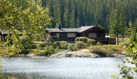 HYTTEMARKED: Mange hytter i Hjartdal kommune har skiftet eiere i løpet av korona-pandemien.