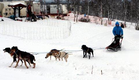 Snart klare for Norway Trail: Magdalena Stenovic kommer inn fra en treningstur.