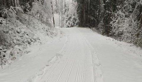 SØRLI: Ildsjelene i NIL har vært ute og begynt å preppe lysløypene inn fra Sørli. For de ivrigste er det bare å sette i gang, men det oppfordres til å bruke ski som tåler litt juling.