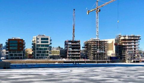 NYE KALDNES SKYLINE: Tre hus under bygging i første rekke fra sjøen: Til høyre, 13 etasjer høye Signaturen. Til venstre for dette, Sjøfront I og II. Bak bygges Dockside F.