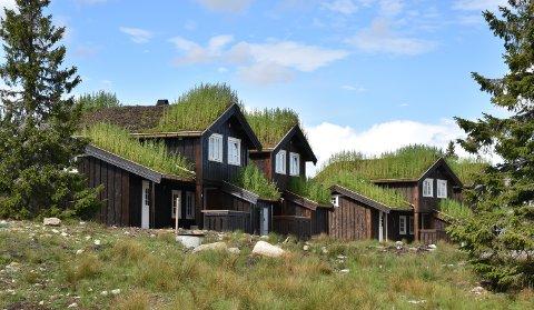 VOKSER: Det bygges stadig nye hytter i Løten, som her på Nordlykkja ved Budor.
