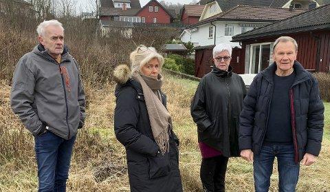 NABOER: Beboere i Ekstrand fra venstre Svein Wold, Anne Bjørg Arntzen, Kjersti Arntzen og Allan Arntzen. Bildet ble tatt  av PD i januar 2020 da naboene protesterte kraftig mot Stein Jaran Fredriksens planer om blokkbebyggelse i området. I dag foreslår Jørn Pettersen 5 eneboliger på Gladhaug. Naboene syns boligene blir for høye og dominerende for den eksisterende bebyggelsen.