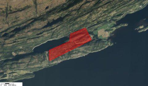 TOMTA: Det skraverte feltet viser forslaget til tomt for batterifabrikk. Tomta ligger sør og øst for Heimsjøen. Til høyre for tomta er Holem.