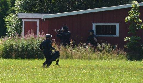 ILLEGALE VÅPEN: Politiet hadde fått nyss om en person som hadde illegale våpen, og satte derfor meldingen om skudd i Seljord i sammenheng med dette. Det førte til en stor politiaksjon.