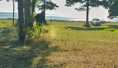 SPRØYTEMIDDEL: Her er den ansatte i gang med å sprøyte gressområdet ved Skallevoldstranda. I bakgrunnen ser man en person som lufter hunden sin rett i nærheten.