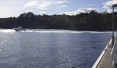 Nær Hagefjordbrygga: I dette området er det Tvedestrand Vekst har fått regulert inn 17 hyttetomter. hele prosjektet skal selges når planen er godkjent av politikerne. Arkivfoto