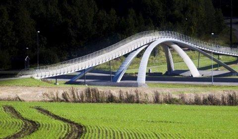 HAR SNUDD HVER STEIN: I fjor sommer snudde prosjektledelsen for nye E18 hver stein i jakten på mulige måter å gjøre motorveien billigere på. Å beholde Da Vinci-brua gjør byggingen dyrere, men landemerket i Ås skal få stå.
