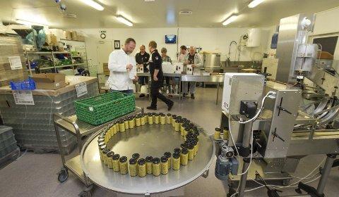 Spinn off: Beiarn håper at det skal bli mer lokal matproduksjon i kjølvannet av suksessen til Arctic Mustard. Det er bevilget ni millioner kroner til et bygg som kan huse flere næringsmiddelbedrifter. Foto: Per Torbjørn Jystad