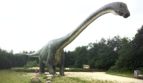 STOR OG LITEN: Tyrannosaurus rex kunne på sin tid bli 40 meter. Nede til venstre i bildet Anton som endelig fikk møte en av sine favoritter.