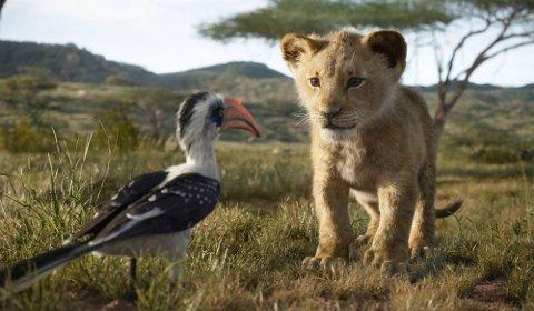 Løveunge: Det meste handler om Simba i suksessfilmen som går så det suser på kino. Den hadde over 14.000 gjester i skoleferien.