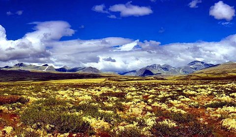 6. Rondane: Ingen over, ingen ved siden. Foto: Laila M. Skogeng