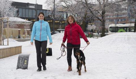 PÅ JOBB: Anne Rui og Berit Jevnaker kan finne på å ha gående medarbeidersamtale langs Mjøsa. Foto: Jo E. Brenden