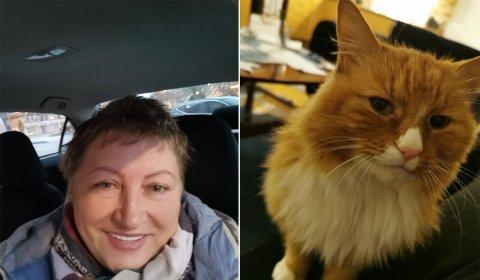 FINNARLØN PÅ 2000 KR: Om kvelden, laurdag 12. desember, blei katten Mosy slept ut for ein luftetur. Matmor Ludmila Montano gjekk til ro for natta. Etterpå har ho ikkje sett katten, no lover ho 2000 kroner i finnarløn.