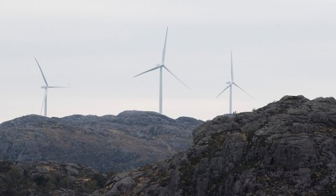 Vassdrags- og energidirektør Kjetil Lund og NVE har gått gjennom konsesjonssystemet for vindkraft på land internt og vurdert tiltak for forbetringar. Rapporten er send til OED. Foto: NTB scanpix.