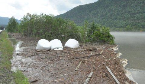 Ryddeaksjon: Nå skal det ryddast både langs vassdraget og i landbruket. Illustrasjonsbilde