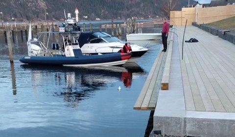 En måke trengte hjelp i båthavna, tirsdag kveld.