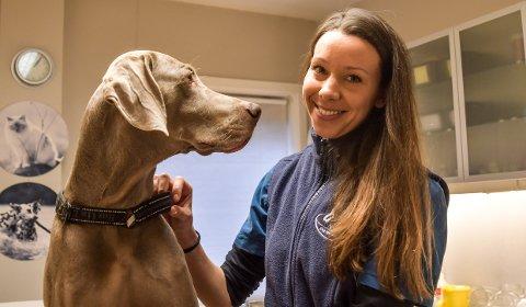 Skummel slutt på året: Dyrlege Nina Kjørholt Salthammer håper  at hundeeiere passer godt på sine firbente venner på nyttårsaften.