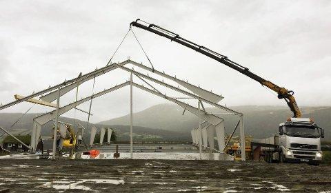 Byggingen av nye fjøs og driftsbygninger har det siste året har økt med 25 prosent. Bildet er hentet fra Midt-norsk bygg og eiendom på Tustna som bygger fjøs i Midt-Norge.