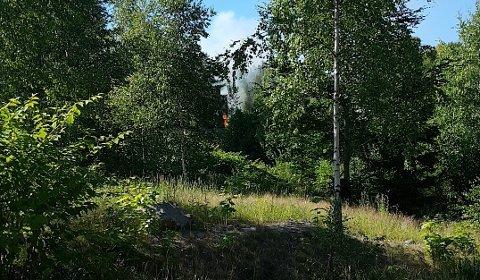 Det brant i skogen ved Moaveien.